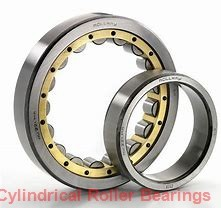 75 mm x 130 mm x 31 mm  Fersa NU2215FM cylindrical roller bearings